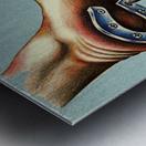 horseshoe Metal print
