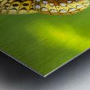 Thistle Nectar Metal print
