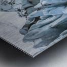 Front face of Colony Glacier, South-central Alaska; Alaska, United States of America Metal print