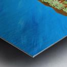 9_009 galvanizing_beauty R Metal print