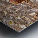 HDR CRYSTAL BALL IN A CYPREE KNEE FORK Metal print