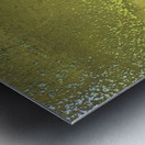 Fish Pond Algae Impression metal
