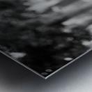29940005 Metal print