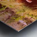 DSC_2554_V2 Metal print