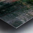 Dutch Shore Metal print