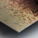 Promise Metal print