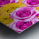 pink rose and yellow rose pattern abstract background Metal print