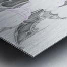 YCH demonix Metal print