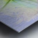 HC0268   Metal print
