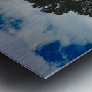 BICENTENIAL Metal print
