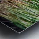 Cut Grass and Pebbles Metal print