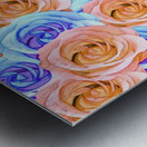 blooming rose texture pattern abstract background in red and blue Metal print
