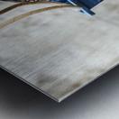Snowcrab Metal print