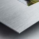 BLUEPHOTOSFORSALE 054 Metal print