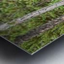 2536-Paddles Metal print