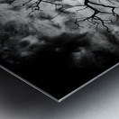 Spooky tree Impression metal