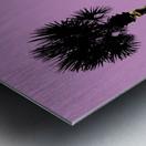 Graphic Art PALM TREES LA | pink Metal print