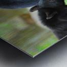 3540-Bear walk Metal print
