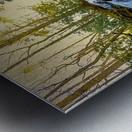 Waterfall in the Woods Metal print