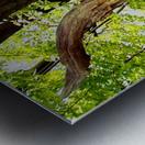 Wooden I   copy Metal print