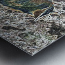 Denali Fox Metal print