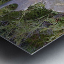 Moose antler Metal print