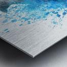 dauphin Metal print