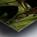 sofn-DD9E757F Metal print