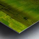 sofn-D8955C26 Metal print