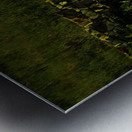 sofn-AD479C1C Metal print
