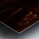 sofn-A43A391F Metal print