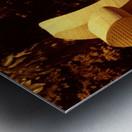 sofn-D845A477 Metal print