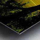 sofn-2B15499B Metal print