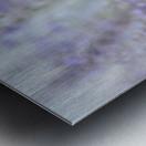 Soft Blue Spring Blossoms Photograph Metal print