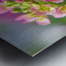 Small Pink Flowers Photography Metal print