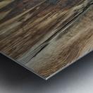 Bone and Wood Metal print