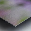 Small Purple White Flower Photograph Metal print