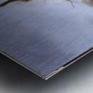 Halt of Travellers Metal print