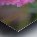 Pink Flower Photography Metal print