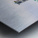 Furman University Metal print