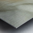 Magnolia Center Metal print