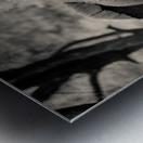 Straight Ahead - Droit Devant Metal print