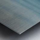 IMG_0019 Metal print