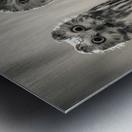 The Odd Couple - B&W Metal print