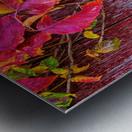Poison Ivy - APC-192 Metal print