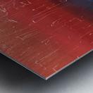 IMG_0058 Metal print