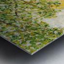 Moret-sur-Loing Metal print