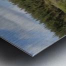 DSC_0930 Metal print