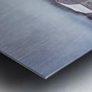 Homestead Metal print
