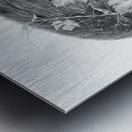 Devine Metal print